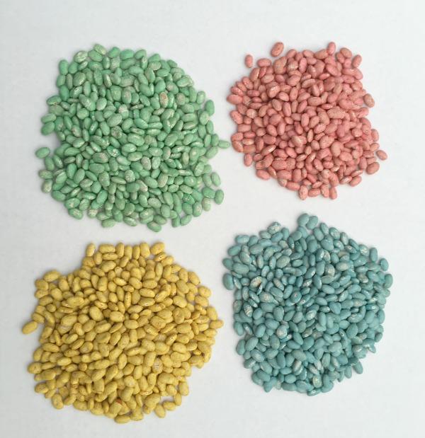 dyed beans notjustpaperandpaint.com