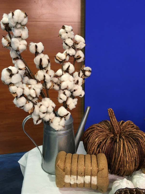 cotton-bolls-galvanized-can-not-just-paper-and-paint