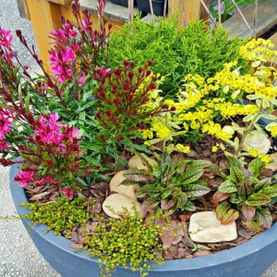 How To Use Colorful Containers Around Your Home