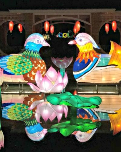 The Stunning Chinese Lantern Festival in Huntsville