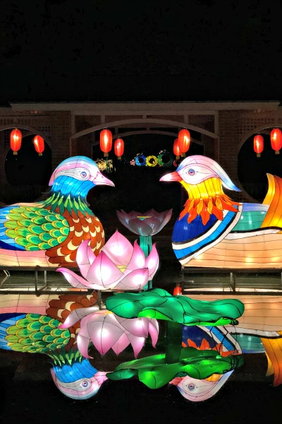 The Stunning Chinese Lantern Festival in Huntsville