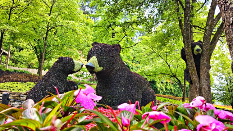 Flower and Food Festival at Dollywood  bears