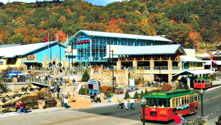 gatlinburg-attractions-feature-my-home-and-travels aquarium
