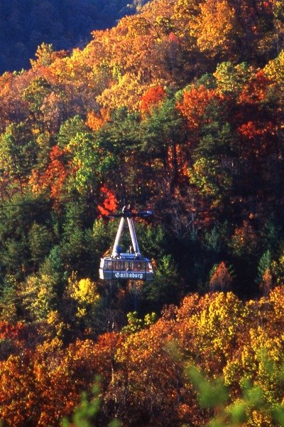 gatlinburg-attractions-feature-my-home-and-travels picture