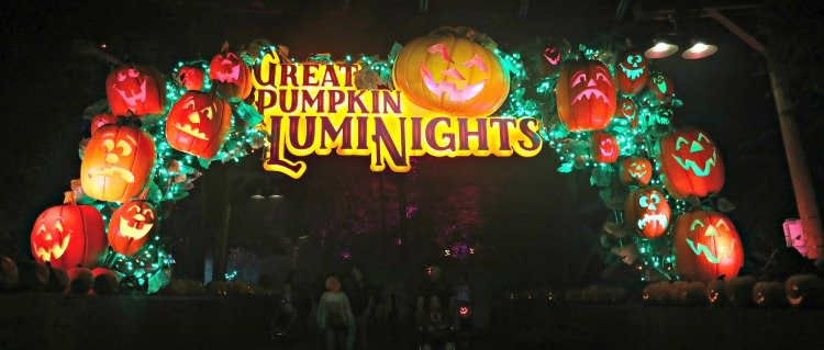 visit dollywood luminights my home and travels entry