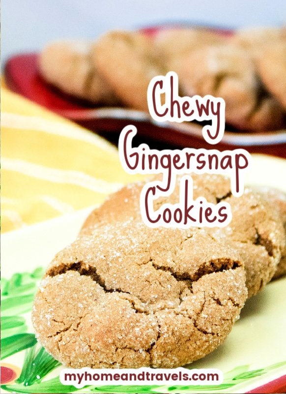 chewy-gingersnap-cookies-my-home-and-travels