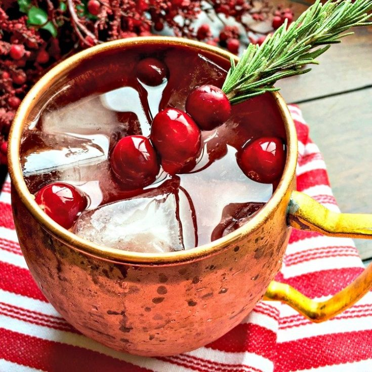 Cranberry Moscow Mule - Holiday Version