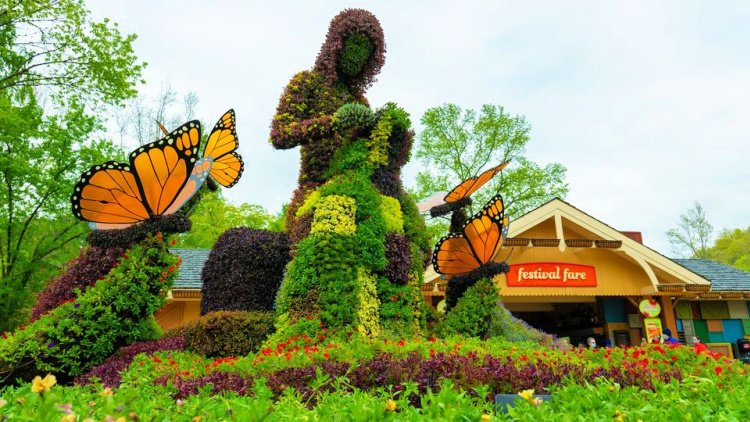 dollywood-flower-food-festival-2021-my-home-and-travels