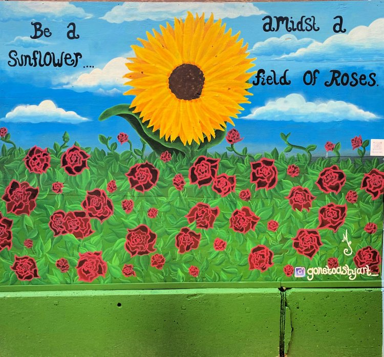 things-to-see-and-do-in-tyler-texas-my-home-and-travels- art alley not a rose