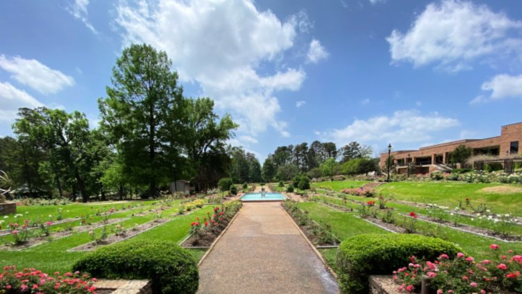 tyler rose garden my home and travels roses and gowns