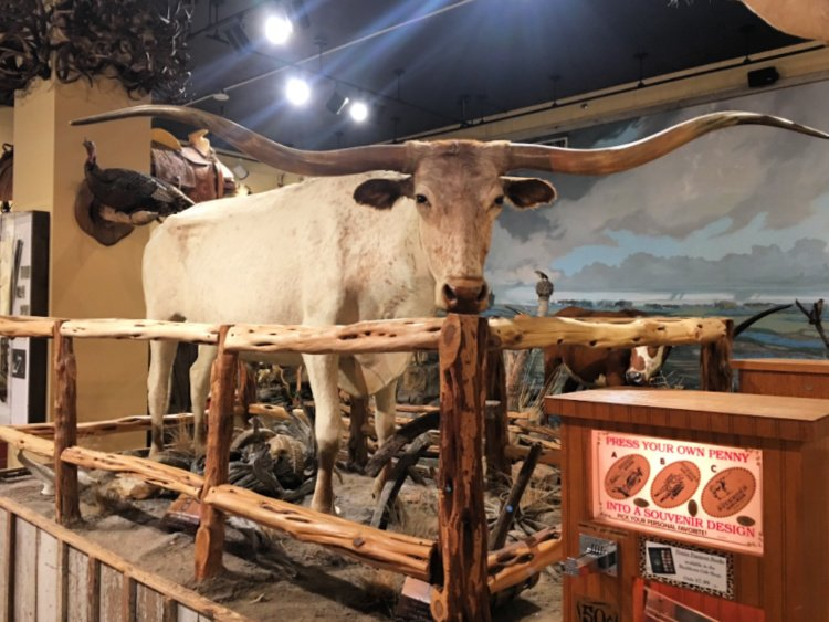 city-sightseeing-tour-san-antonio-my-home-and-travels- longhorn saloon