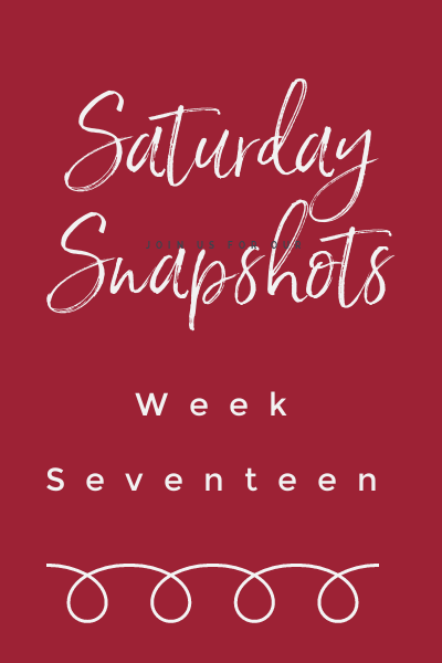 saturday snapshots week 17