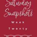 saturday snapshots week 20 pinterest image