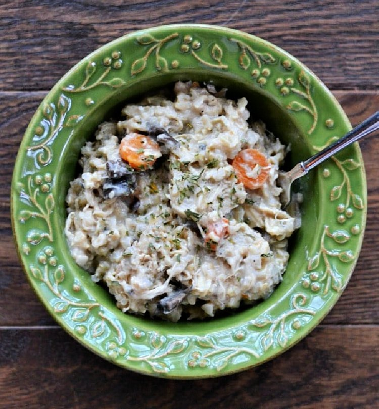 15 of the best slow cooker recipes my home and travels  chicken and brown rice
