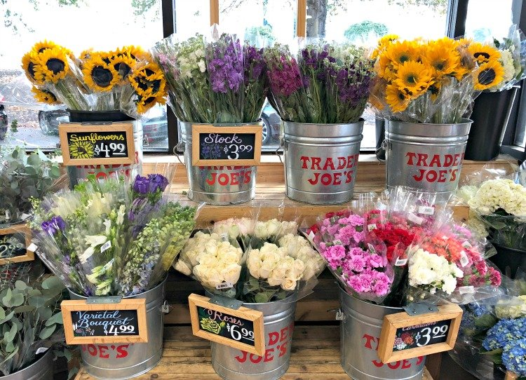 trader joes is opening in chattanooga my home and travels flowers