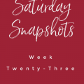 saturday snapshot my home and travels feature image
