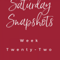 saturday snapshots week twenty two my home and travels feature image