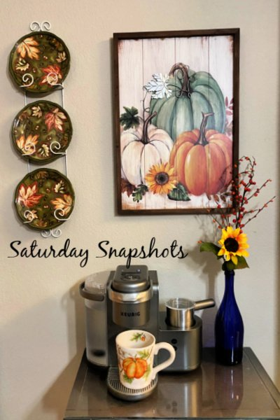 saturday-snapshots-week-26-my-home-and-travels-featured-image