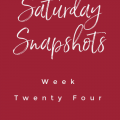 saturday-snapshots-week-twenty-four-my-home-and-travels-feature-image