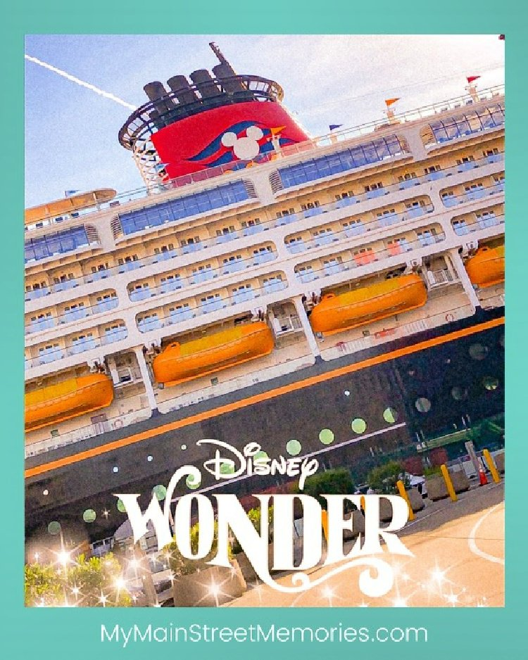 using a disney planner my home and travels  wonder cruise ship