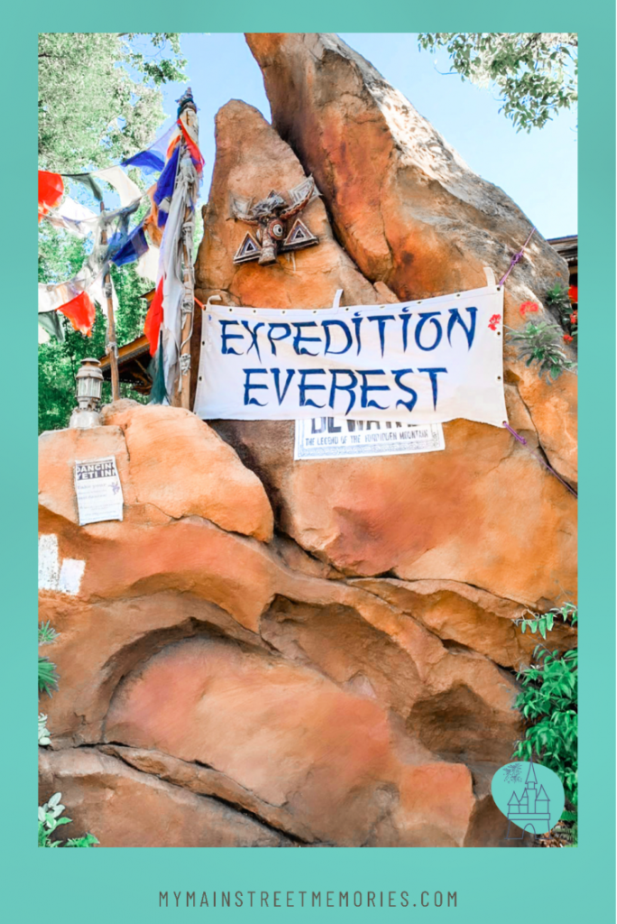 using a disney planner my home and travels  expedition everest
